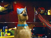 Scooby-Doo Photo 18