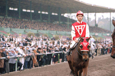 Seabiscuit Photo 12 - Large