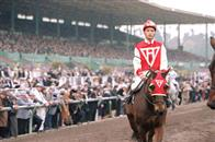 Seabiscuit Photo 12