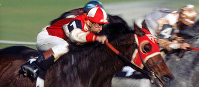 Seabiscuit Photo 2 - Large