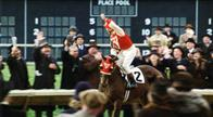 Seabiscuit Photo 25