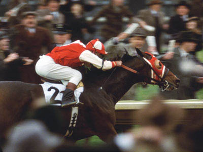 Seabiscuit Photo 24 - Large