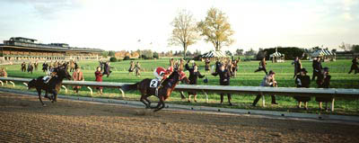 Seabiscuit Photo 1 - Large