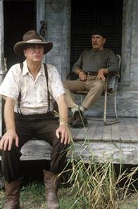Secondhand Lions Photo 4