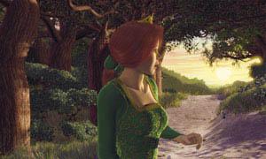 Shrek Photo 2 - Large
