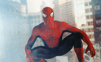 Spider-Man Photo 5 - Large