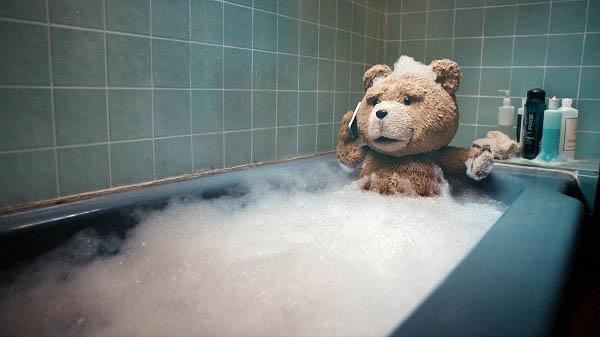 Ted Photo 4 - Large