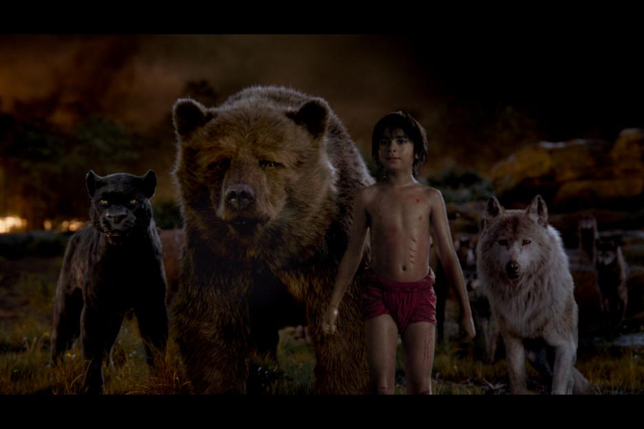 The Jungle Book Photo 24 - Large