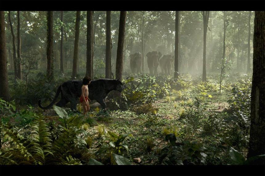 The Jungle Book Photo 22 - Large