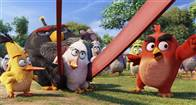 The Angry Birds Movie Photo 29