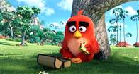 The Angry Birds Movie Photo 26