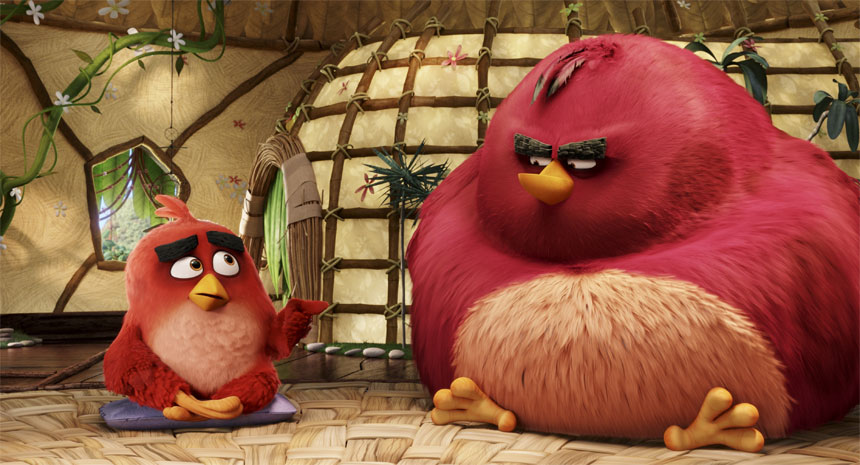 The Angry Birds Movie Photo 9 - Large