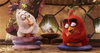 The Angry Birds Movie Photo 10