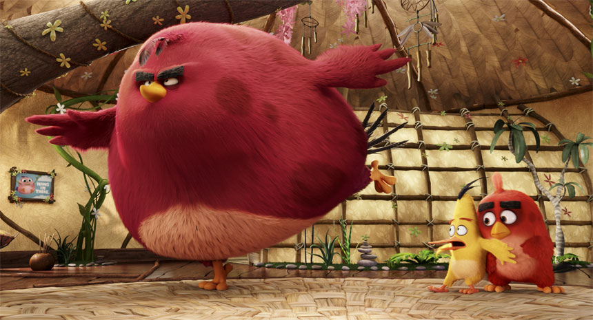 The Angry Birds Movie Photo 13 - Large