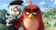 The Angry Birds Movie Photo 21