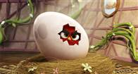 The Angry Birds Movie Photo 22