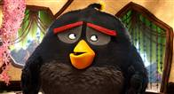 The Angry Birds Movie Photo 39