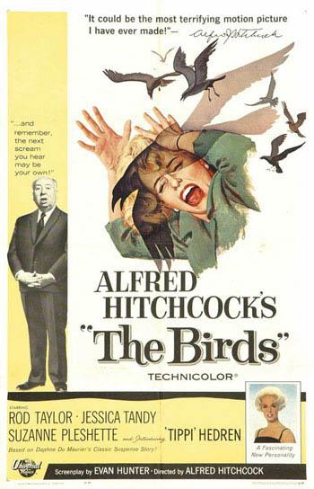The Birds Photo 1 - Large