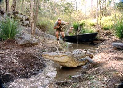 The Crocodile Hunter: Collision Course Photo 11 - Large