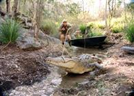 The Crocodile Hunter: Collision Course Photo 11