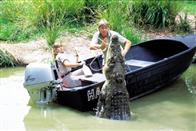 The Crocodile Hunter: Collision Course Photo 10
