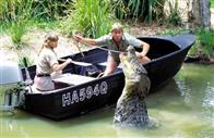 The Crocodile Hunter: Collision Course Photo 3