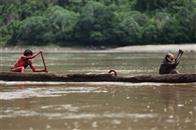 The Green Inferno Photo 5