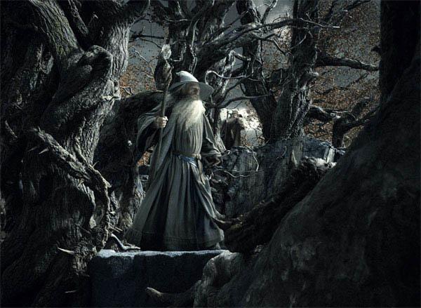 The Hobbit: The Desolation of Smaug Photo 51 - Large