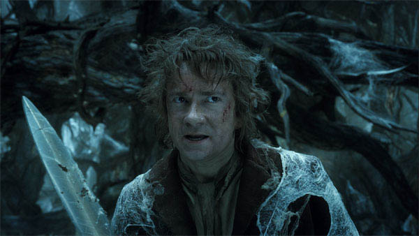 The Hobbit: The Desolation of Smaug Photo 29 - Large