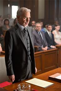 The Judge Photo 34