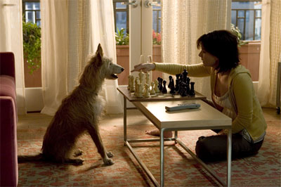 "SANDRA BULLOCK as Kate Forster plays chess with her dog Jack in Warner Bros. Pictures' and Village Roadshow Pictures' romantic drama ""The Lake House,"" also starring Keanu Reeves. - Large"