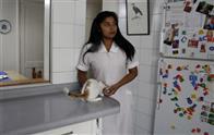 The Maid Photo 4