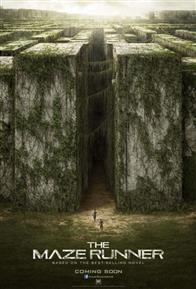 The Maze Runner Photo 7