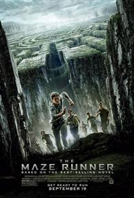 The Maze Runner Photo 8