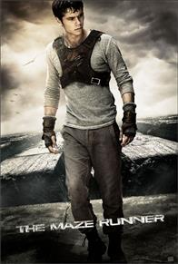 The Maze Runner Photo 19