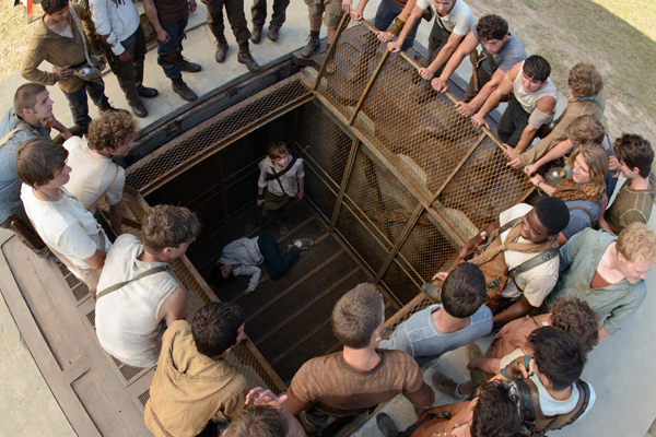 The Maze Runner Photo 5 - Large