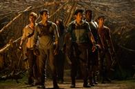 The Maze Runner Photo 6