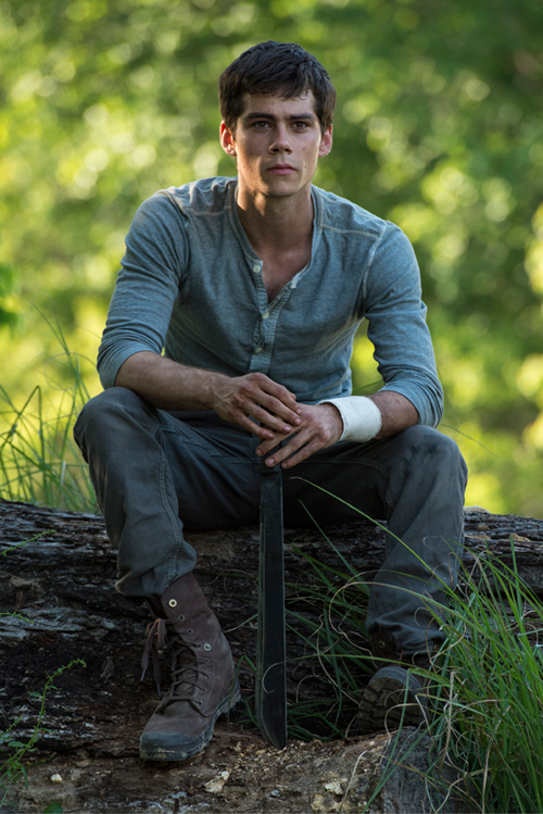 The Maze Runner Photo 20 - Large