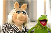 The Muppets Photo 5