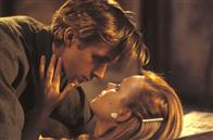 The Notebook Photo 1