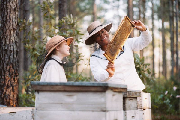 The Secret Life of Bees Photo 3 - Large
