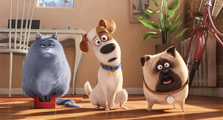 The Secret Life of Pets Photo 21 - Large