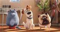 The Secret Life of Pets Photo 21