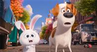 The Secret Life of Pets Photo 8