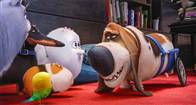 The Secret Life of Pets Photo 5