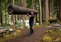 The Twilight Saga: Breaking Dawn - Part 1 photo 4 of 35