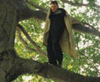 Treed Murray Photo 2