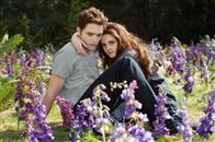 The Twilight Saga: Breaking Dawn - Part 2 Photo 16