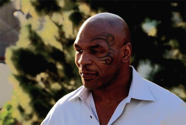 Tyson Photo 4 - Large