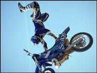 Ultimate X Photo 3